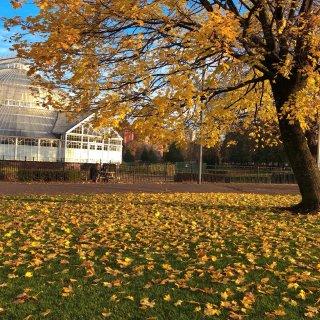 Glasgow Green Park