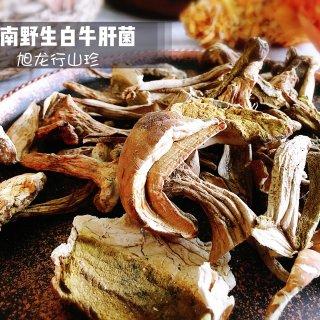 森林美食交响曲|旭龙行顶级野生菌菇
