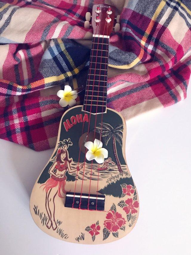 美貌的装饰品-夏威夷四弦琴