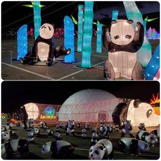 【Hello Panda 彩灯饰展览】空降大纽约