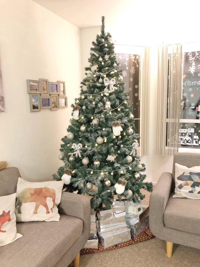 帮圣诞树人工降雪❄️❄️❄️