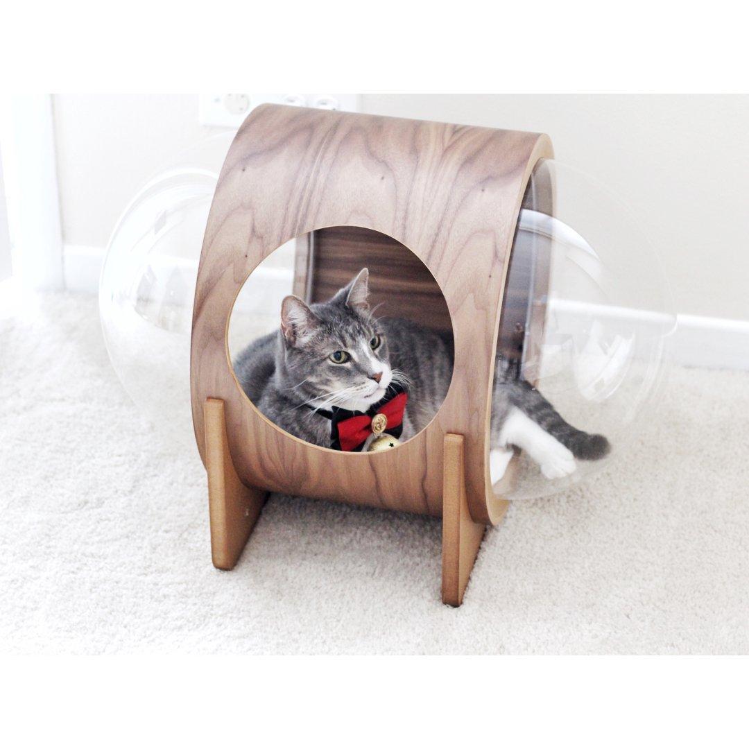 【五月首篇晒货】颜值超高的猫咪太空舱😽