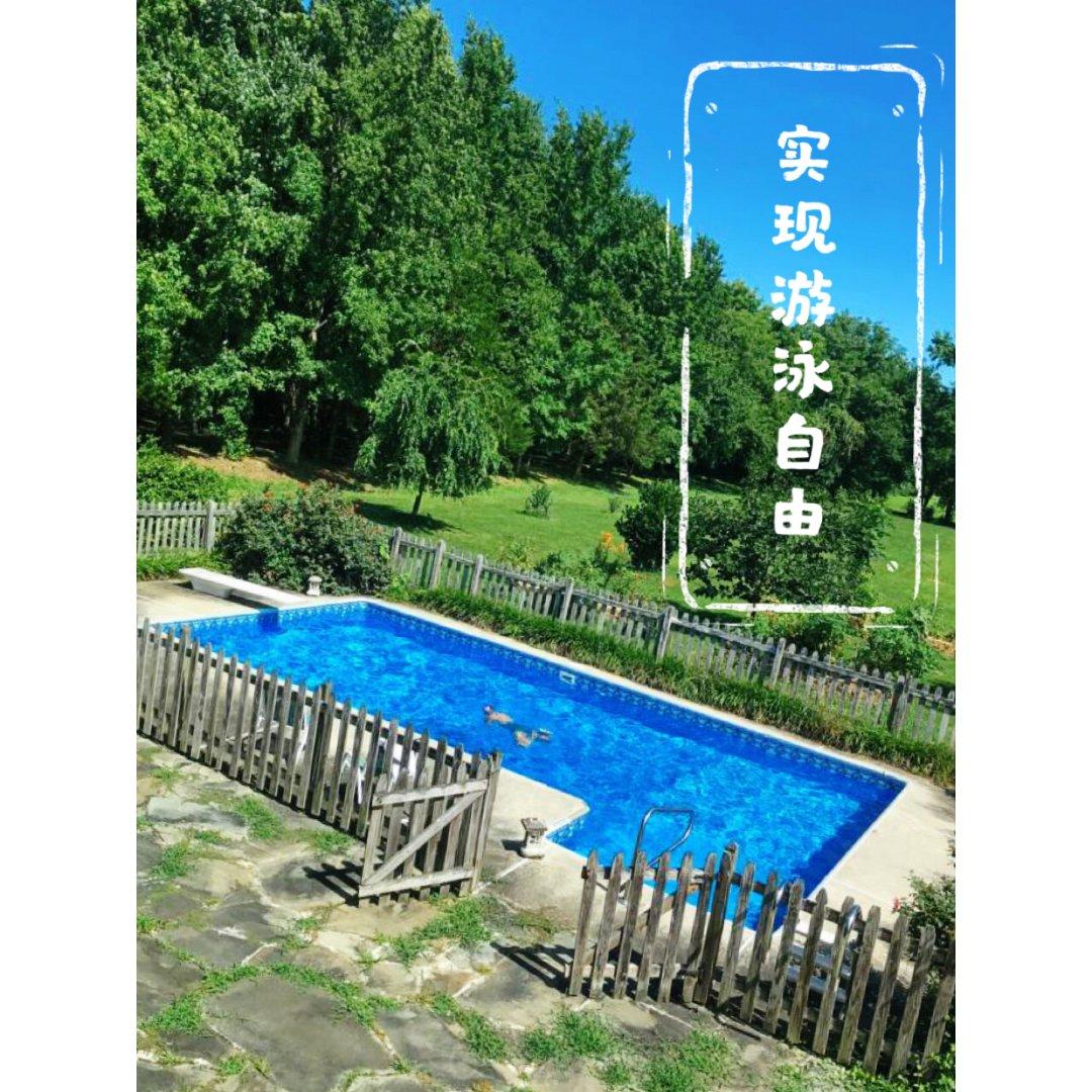 家装分享|想自己在后院建泳池么🏊🏼♀️