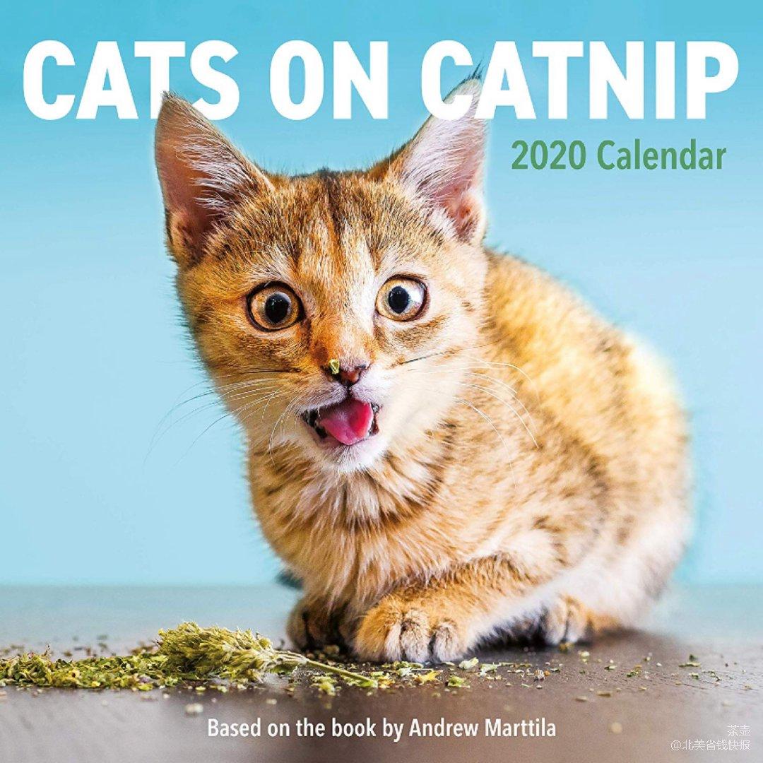 猫奴必备 | 2020天天看主子打滚😆