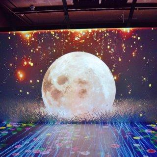 梦里寻它千百度——Dream Space 属于你的梦空间🥰
