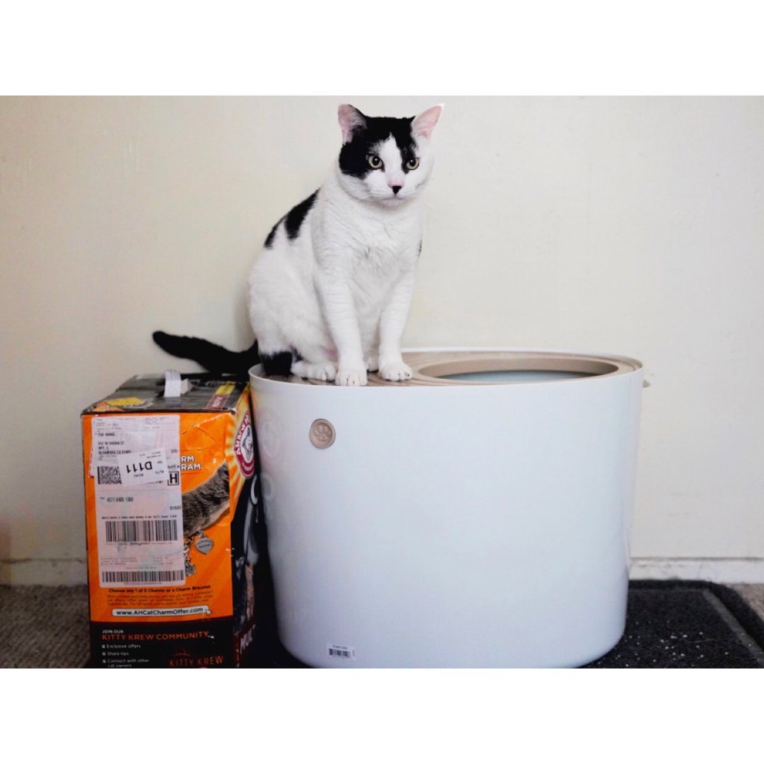 🐱猫奴救星| 再也不清理一地的猫砂
