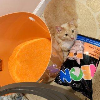 微众测/Neon Litter水晶猫砂与好奇猫