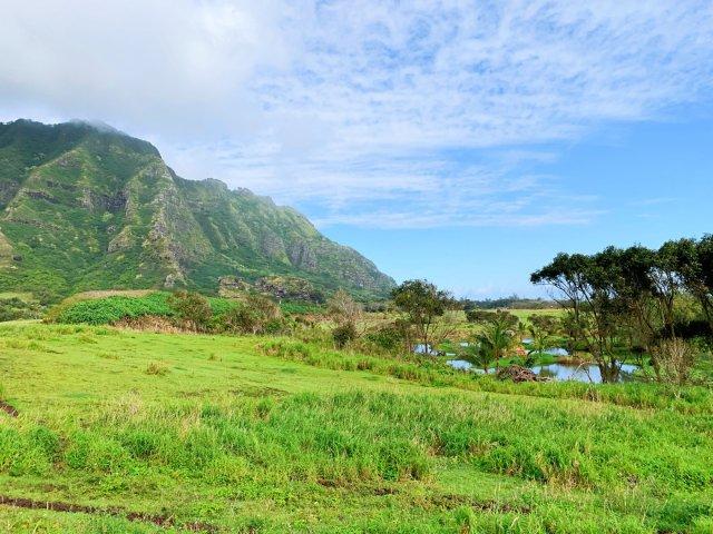 【夏威夷欧胡岛小游记】超美古兰尼牧场
