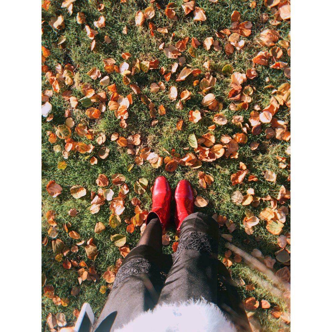 小确幸🍁|满地金黄与红叶满山的秋🧡