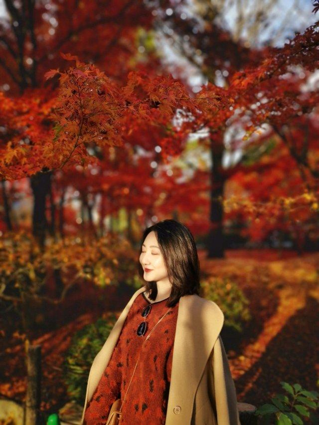 赏樱可以在日本各地,但是赏枫🍁必须...