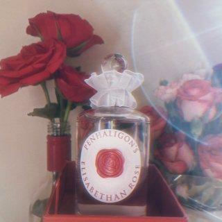 伊丽莎白玫瑰