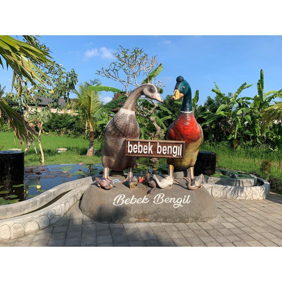 峇里島 🦆 髒鴨料理