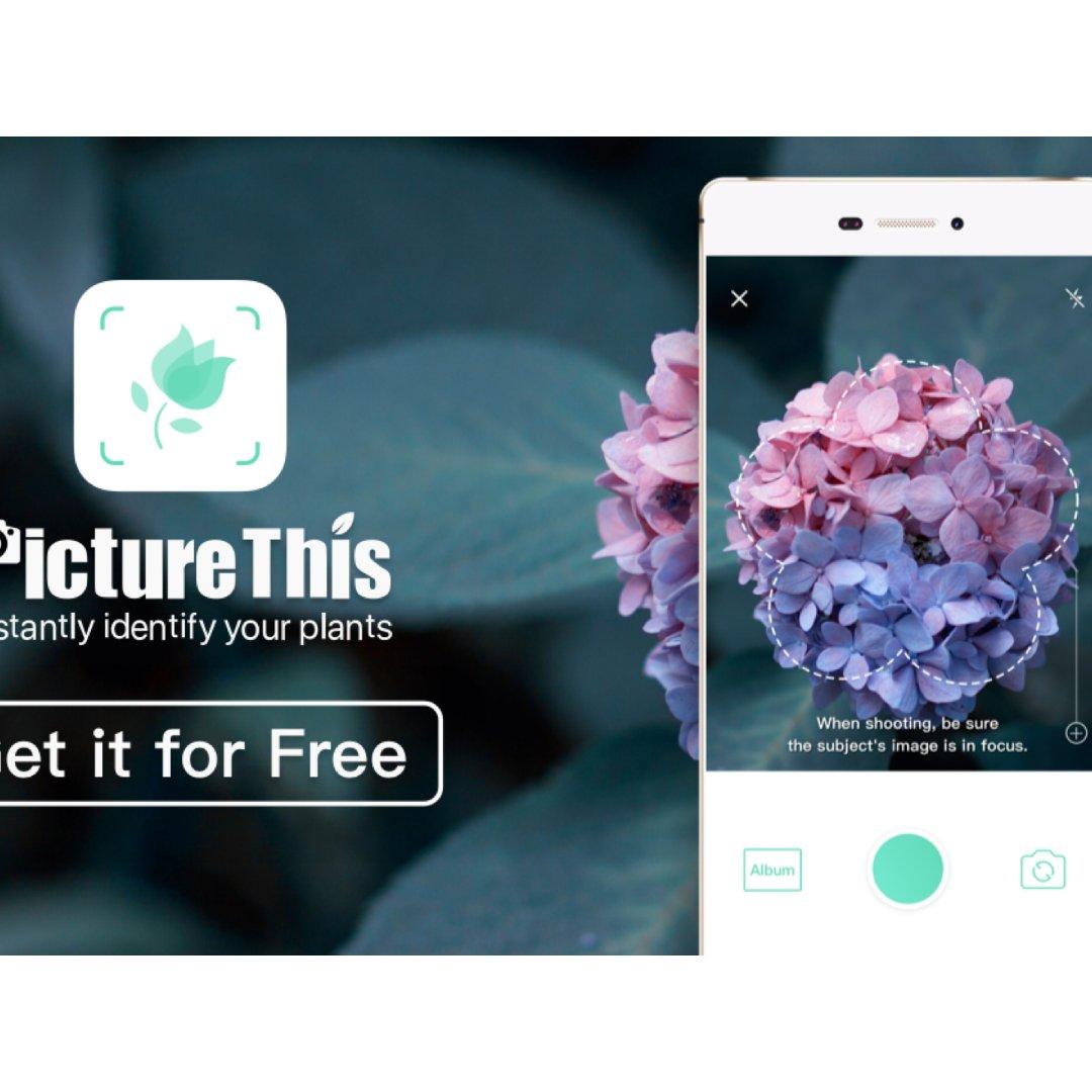 发现一个超好用的app, 可以瞬间告诉你...