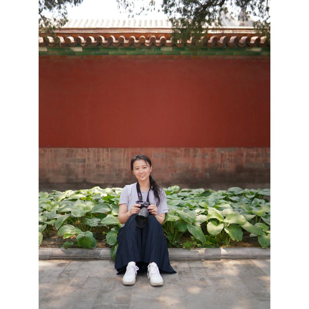 紫禁城的优衣库铝纸