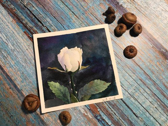 送你一朵小花花