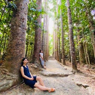 澳大利亚梦想城堡-帕罗尼拉公园...
