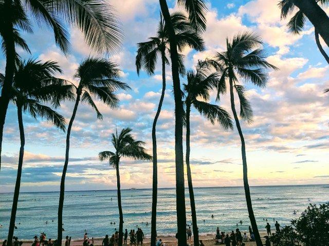 #晒货背景墙| 用夏威夷的夕阳纪念长周末