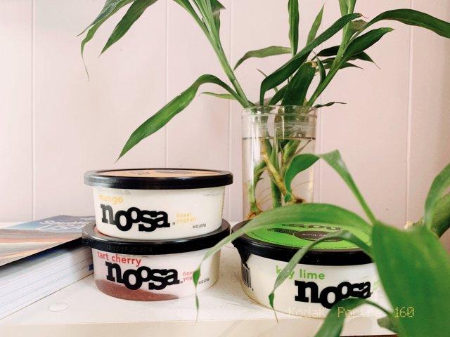 酸奶买哪个 Noosa必须拥有姓名