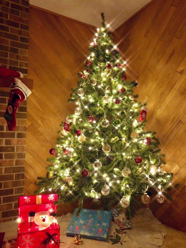 🎄今年的圣诞树🎄