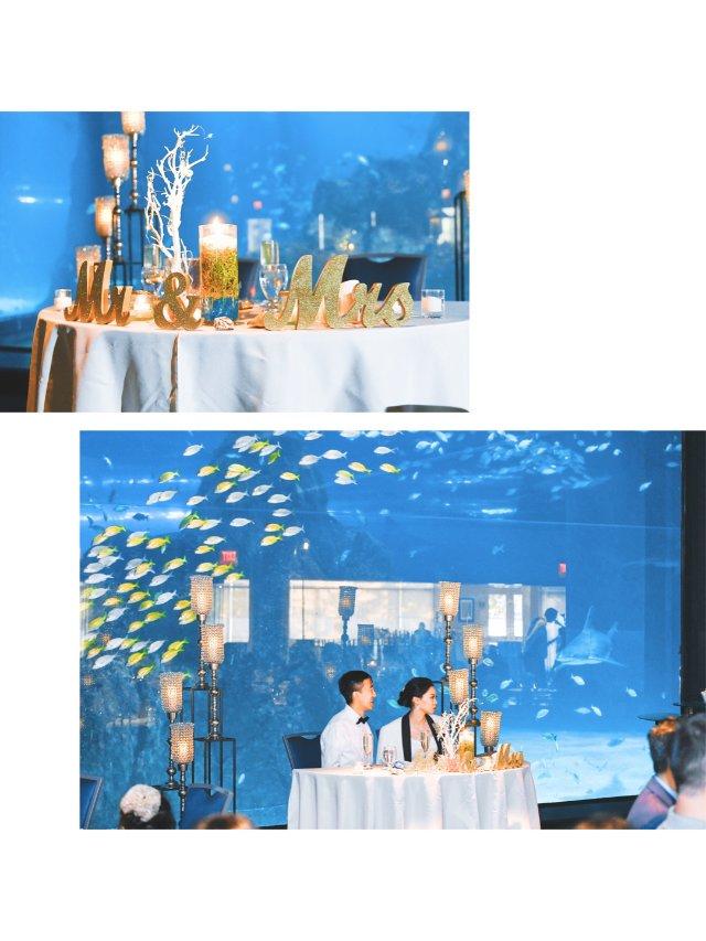 我的DIY蓝色水族馆婚礼の布置小细节