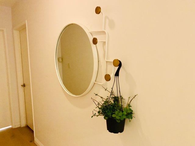新入的镜子,好漂亮呀