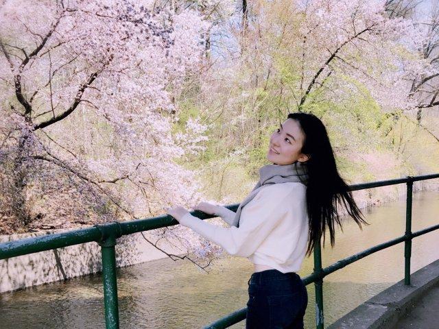 樱花季🌸 你准备好了吗?