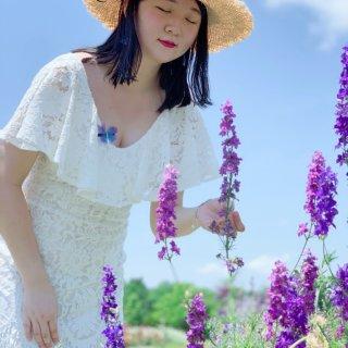 北卡农场摘草莓摘花花|甜美的采摘季又要到...
