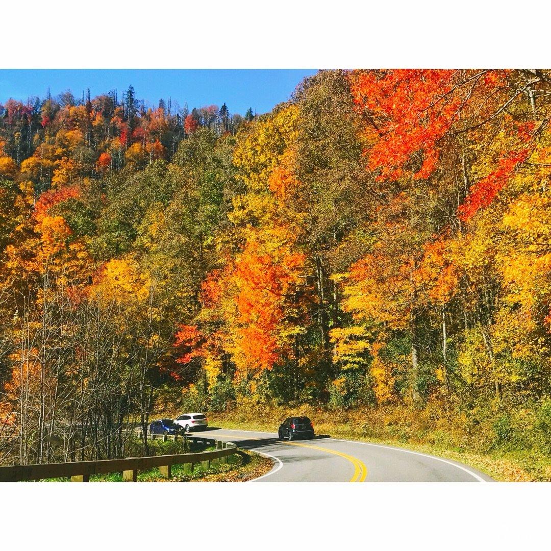 旅行——最美不过深秋时节的大烟山