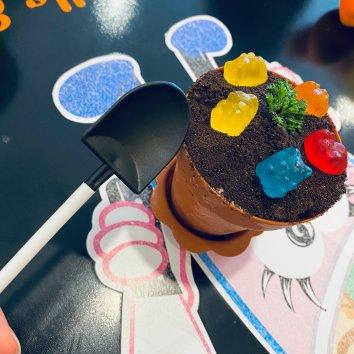 吃到了网红盆栽冰淇淋,炒冰淇凌,还有小囧娃娃奶昔!都在...