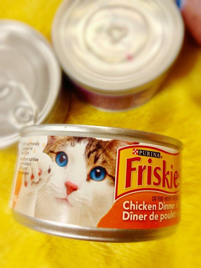 🐱猫主子的最爱—Purina Fr...