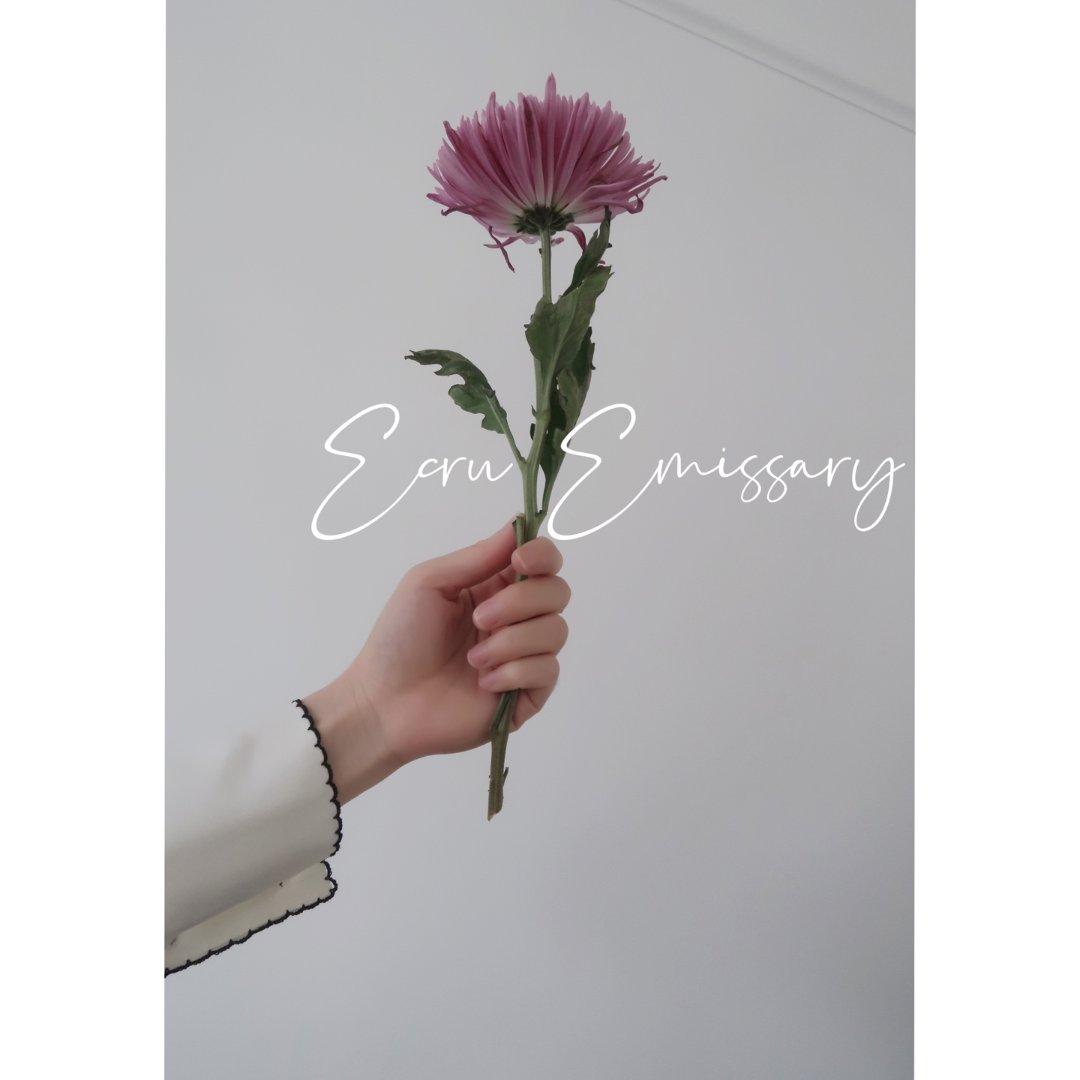 【微众测】Ecru Emissary 真...