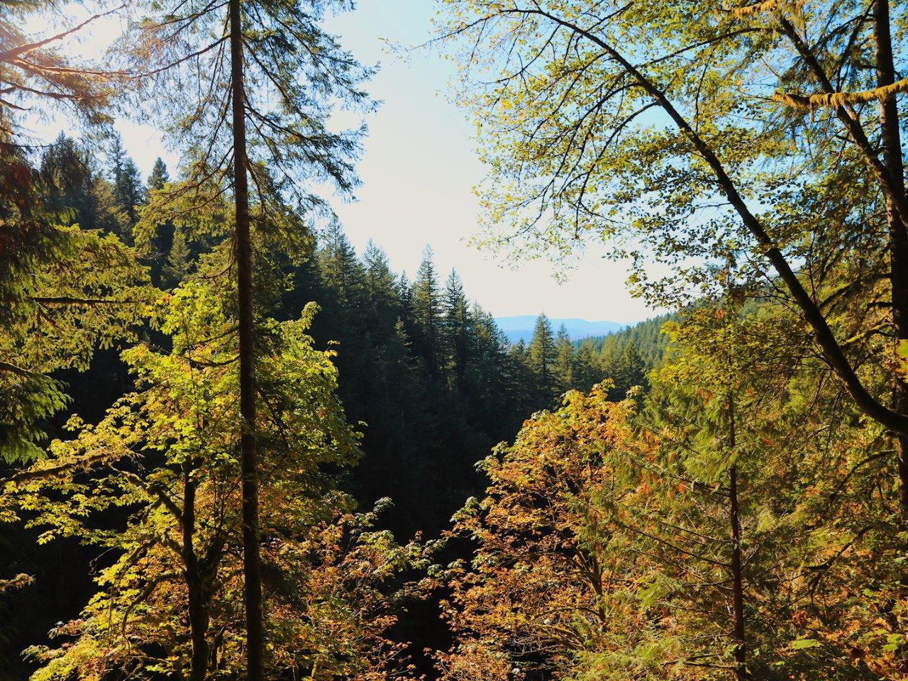 西雅图小众state park  ...