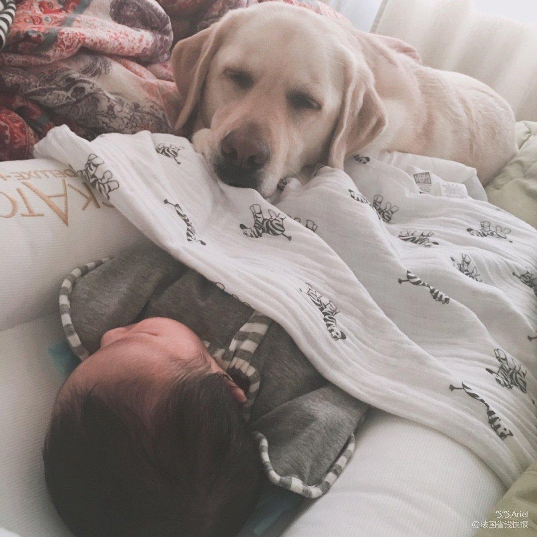 分享给大家生孩子遇到的狗血剧情