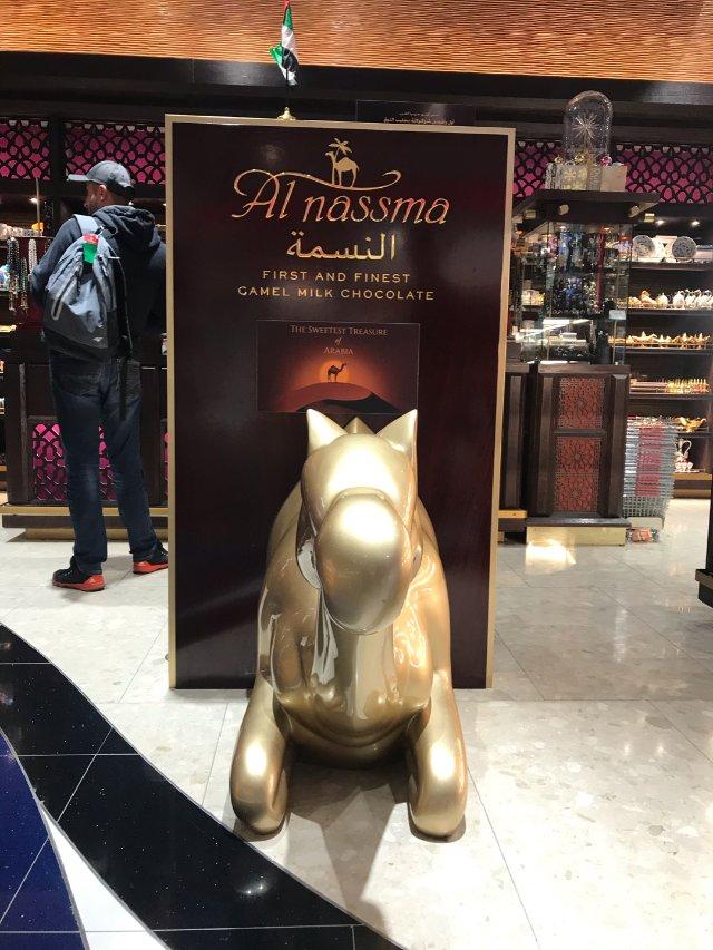 去Dubai買特產,世界首款駱駝奶...