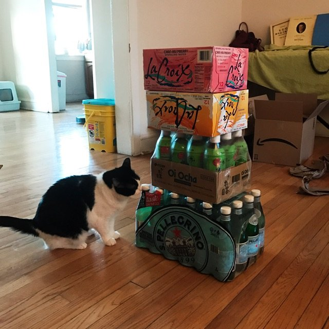 老公一口气把六十瓶饮料抬上楼!夏天...