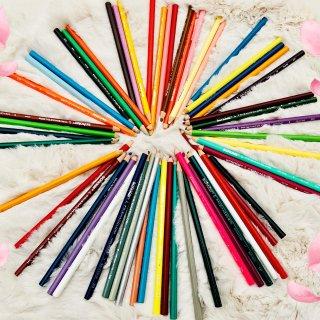 🌈Prismacolor 彩色铅笔-宅家...