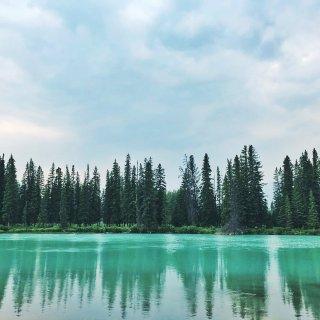 •Banff• 春夏秋冬都美呆...