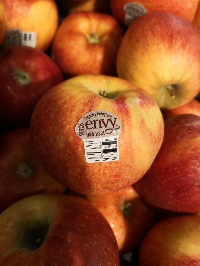 7 有機 e n v y苹果