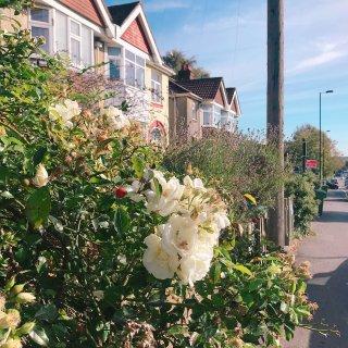 英国初印象-南安的好天气...