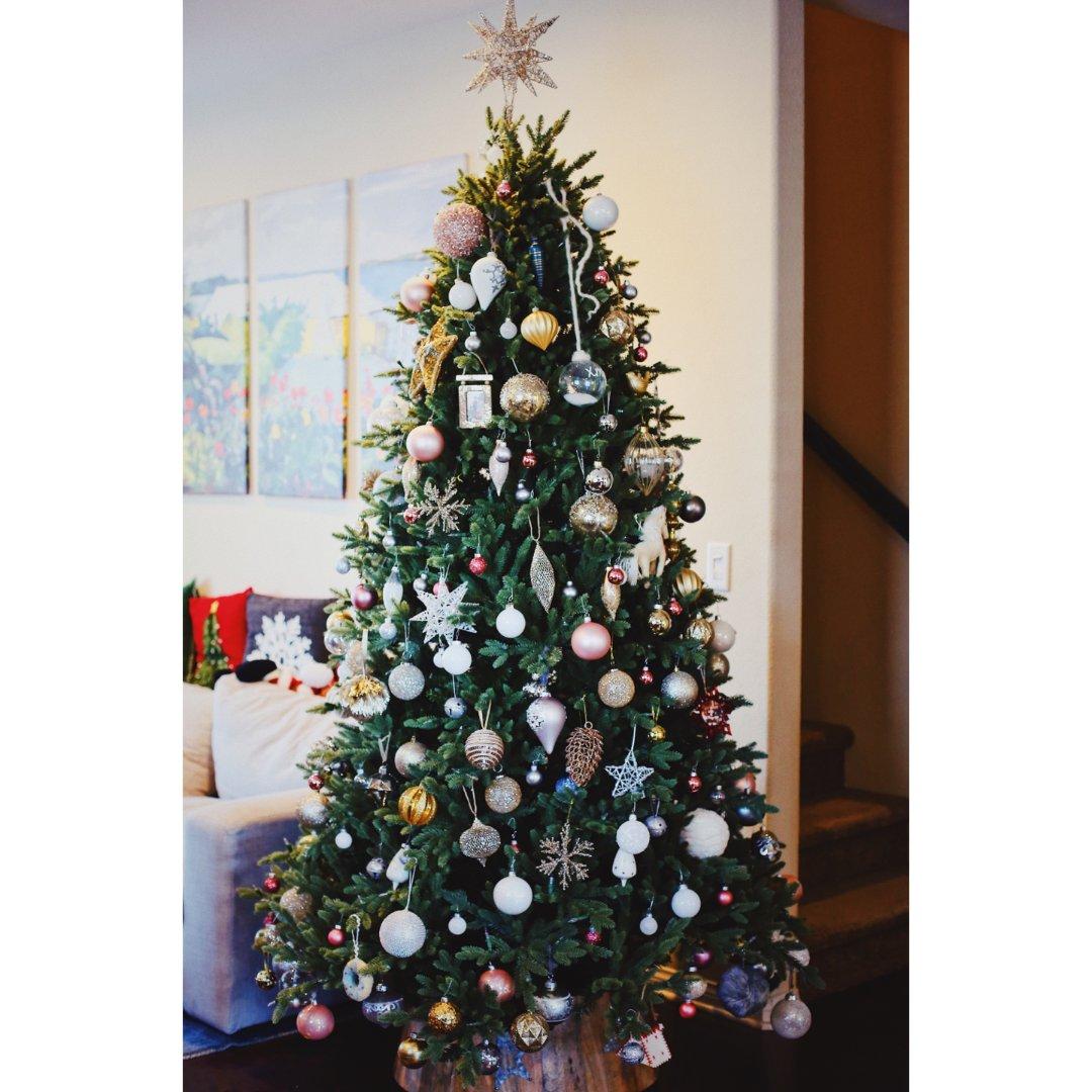 来晒晒我家的圣诞树吧