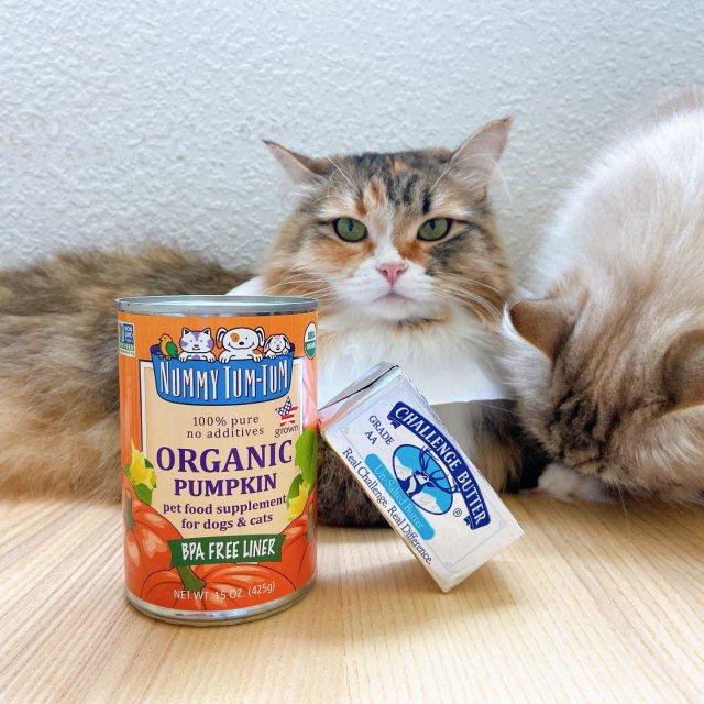 🎃 猫咪肠胃好帮手|南瓜泥