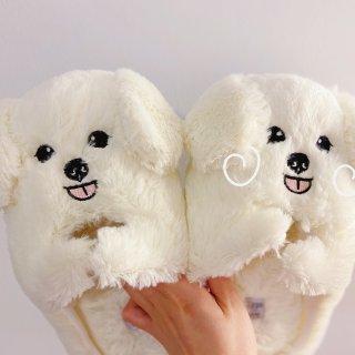 可可爱爱的棉拖鞋🐶...