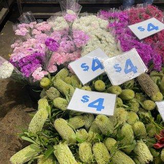 周六的早晨一起逛花市吧!悉尼鲜花市场太好...
