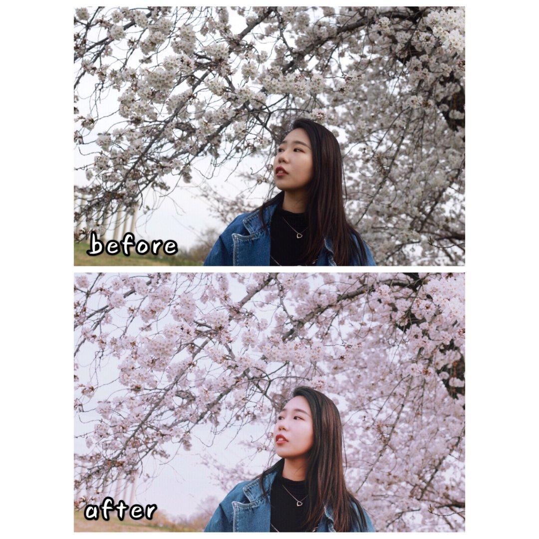 春日穿搭 vsco樱花调色教程