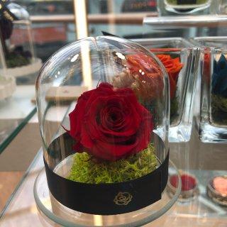 爱的礼物🎁Endura永生玫瑰🌹...