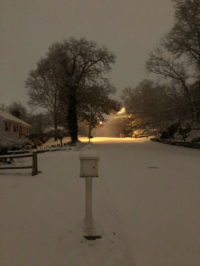 波士顿下雪啦❄️❄️❄️
