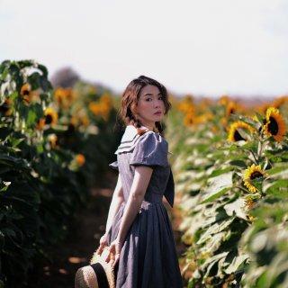 洛杉矶周边游|SD向日葵园🌻昭和日系甜美...