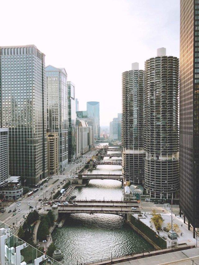 人从众𠈌👬夏日里の芝加哥