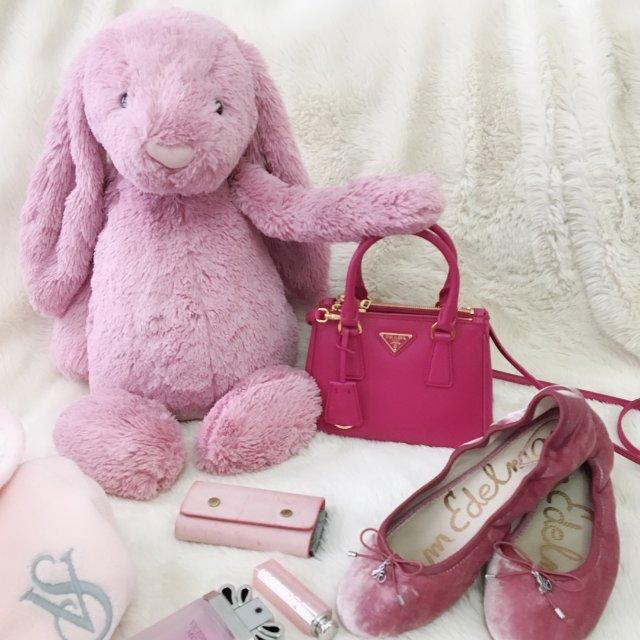 我是一只粉红色的胖兔子,爱一切其他...
