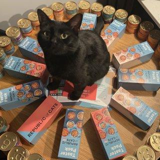 3镑75p一卡车猫罐头🥫后续测评:8种口...